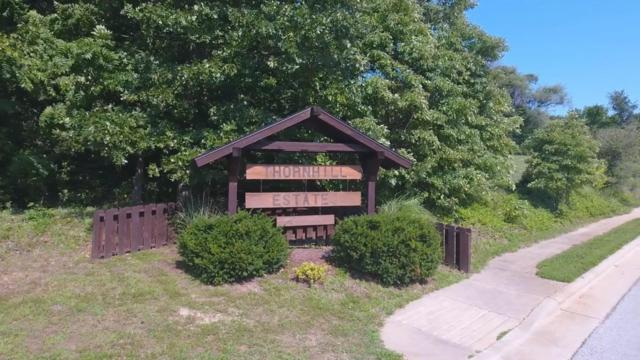 Lot 20 S 13th Street, Ozark, MO 65721 (MLS #60092930) :: Team Real Estate - Springfield