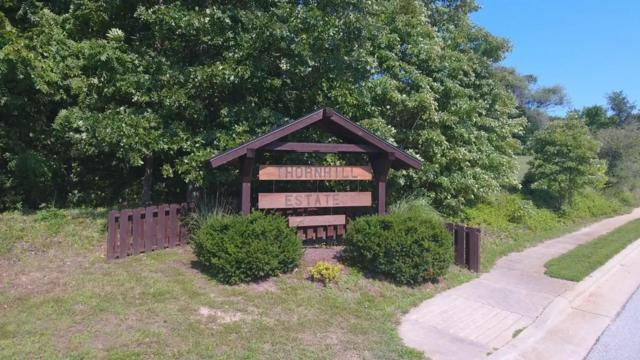 Lot 9 W Wildcherry Street, Ozark, MO 65721 (MLS #60092940) :: Team Real Estate - Springfield