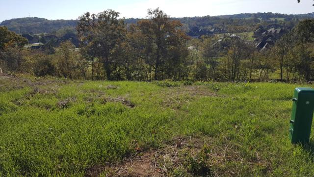 Lot 9 Ph 16 Rivercut, Springfield, MO 65810 (MLS #60093058) :: Sue Carter Real Estate Group