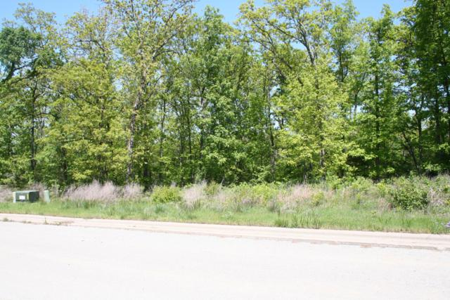 Tbd Lot 29 Deauville Circle, Branson, MO 65616 (MLS #60095480) :: Massengale Group