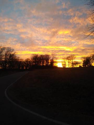 Lot 90 Fox Hollow Drive, Shell Knob, MO 65747 (MLS #60098015) :: United Country Real Estate