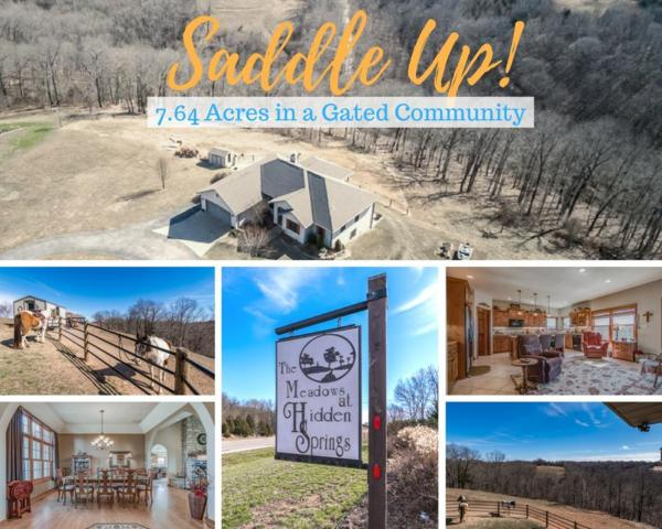 484 Hidden Springs Lane, Reeds Spring, MO 65737 (MLS #60102290) :: Team Real Estate - Springfield