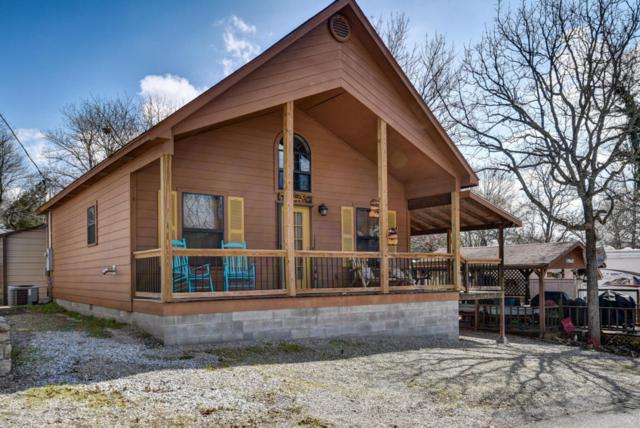 145 Hollow Log, Hollister, MO 65672 (MLS #60103131) :: Team Real Estate - Springfield