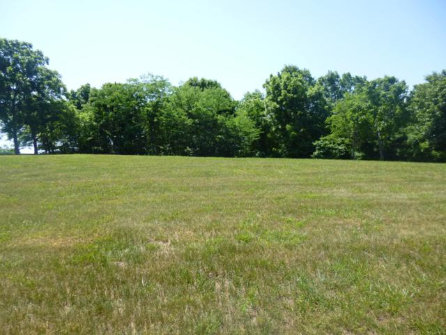 Lot 28/29 Edge Water Village, Cape Fair, MO 65624 (MLS #60104280) :: The Real Estate Riders