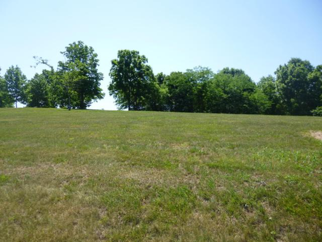 Lot 29 Edgewater Village Drive, Cape Fair, MO 65624 (MLS #60104287) :: The Real Estate Riders