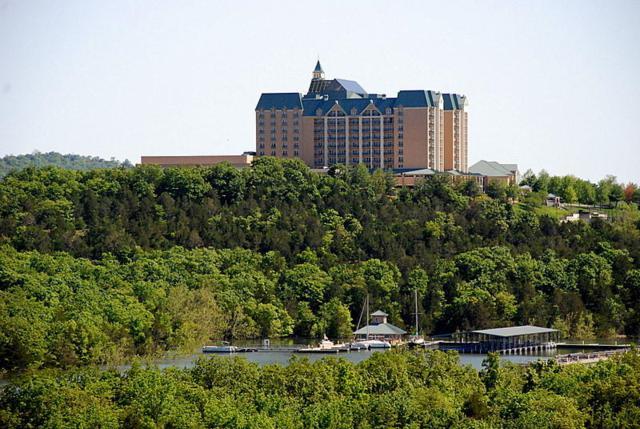 200 Majestic Drive #219, Branson, MO 65616 (MLS #60104713) :: Team Real Estate - Springfield