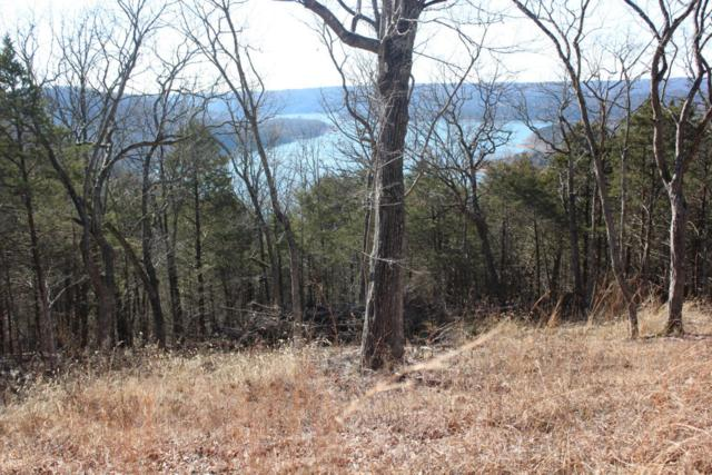 Lot 2 Monticello Road, Galena, MO 65656 (MLS #60106007) :: Sue Carter Real Estate Group