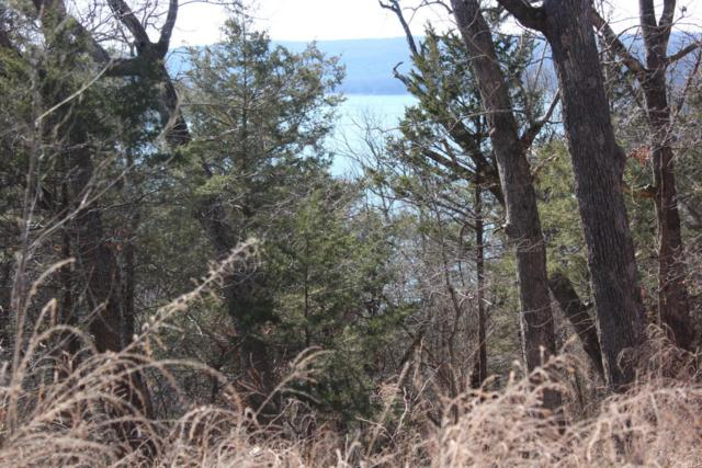 Lot 3 Oakcliff Drive, Galena, MO 65656 (MLS #60106020) :: Sue Carter Real Estate Group