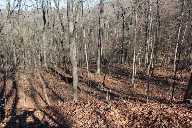 Lot 18 Monticello Road, Galena, MO 65656 (MLS #60106092) :: Winans - Lee Team | Keller Williams Tri-Lakes