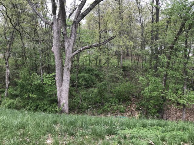 5833 S Cloverdale Lane, Battlefield, MO 65619 (MLS #60107181) :: Sue Carter Real Estate Group