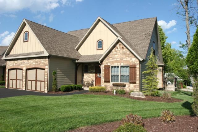 185 The Provence, Blue Eye, MO 65611 (MLS #60107870) :: Team Real Estate - Springfield
