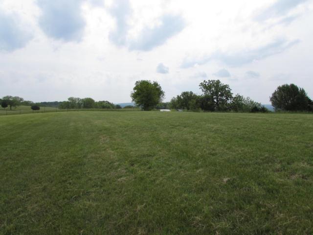 Tbd Gavins Trail, Walnut Shade, MO 65771 (MLS #60108009) :: Greater Springfield, REALTORS