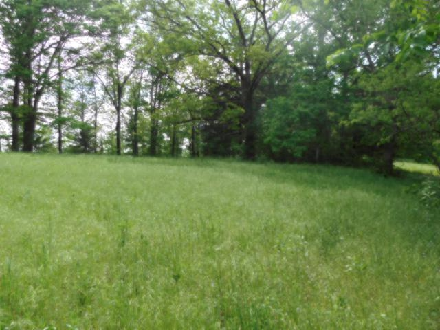 Tbd Deer Trail Drive, Pineville, MO 64856 (MLS #60108171) :: Team Real Estate - Springfield