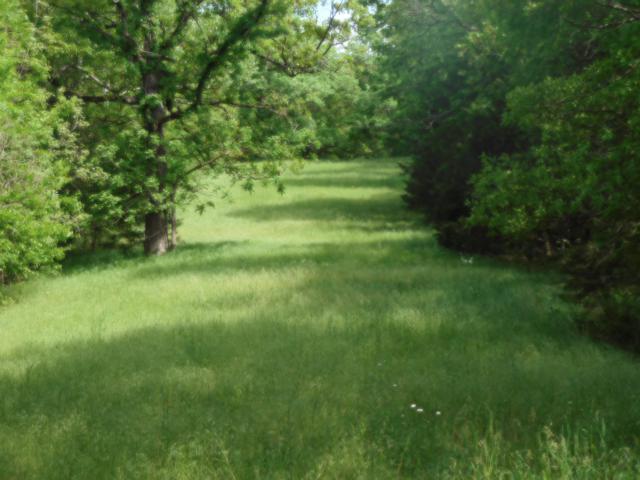 Tbd Deer Trail Drive, Pineville, MO 64856 (MLS #60108238) :: Team Real Estate - Springfield
