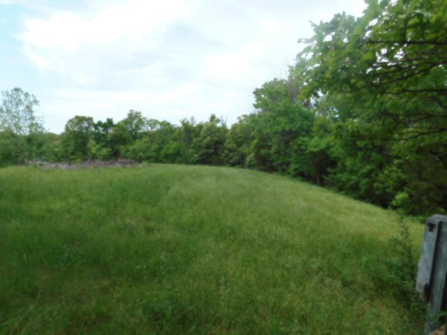 Tbd Deer Trail Drive, Pineville, MO 64856 (MLS #60108267) :: Team Real Estate - Springfield