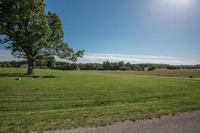 Lot 18 Cottage Gate Drive, Billings, MO 65610 (MLS #60109025) :: Sue Carter Real Estate Group