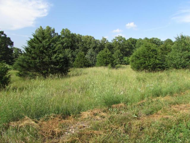 Lot 3 Oakwood Estates, Houston, MO 65483 (MLS #60110425) :: Good Life Realty of Missouri