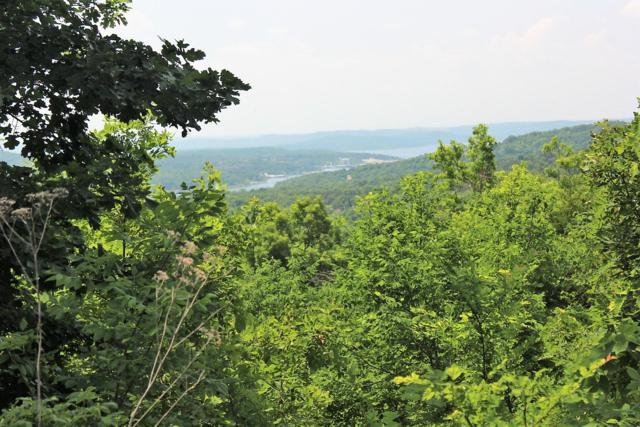 Lot 229 Bethany Lane, Branson West, MO 65737 (MLS #60110689) :: Weichert, REALTORS - Good Life
