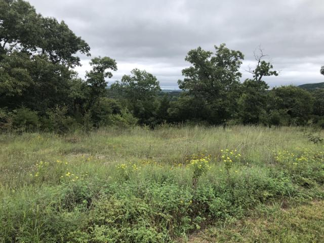 Lot 157 Black Forest, Branson West, MO 65737 (MLS #60110719) :: Greater Springfield, REALTORS
