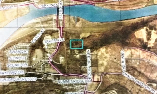 Tbd Rocky Knolls Estates 15 & 16, Forsyth, MO 65653 (MLS #60112031) :: Sue Carter Real Estate Group
