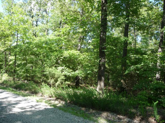 Tbd Co Rd 153, Elizabeth, AR 72531 (MLS #60112041) :: Team Real Estate - Springfield