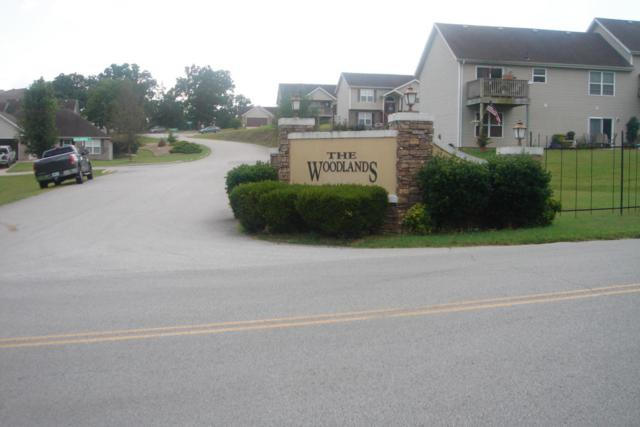 133 Birchwood Circle, Branson, MO 65616 (MLS #60113669) :: Weichert, REALTORS - Good Life