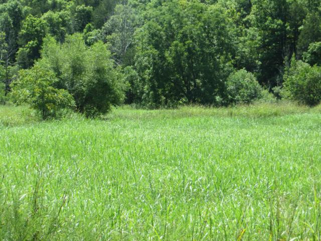Lot 10 11 County Road 479, Mountain Home, AR 72653 (MLS #60114891) :: Team Real Estate - Springfield