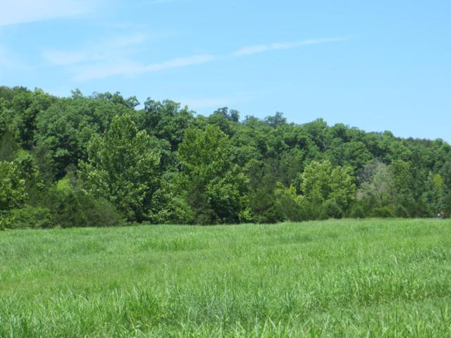 Lot 12 13 County Road 479, Mountain Home, AR 72653 (MLS #60114896) :: Team Real Estate - Springfield