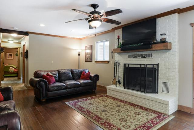1378 Table Rock Circle, Indian Point, MO 65616 (MLS #60114929) :: Team Real Estate - Springfield