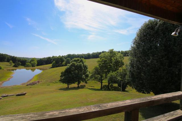 4495 County Road 35, Mountain Home, AR 72653 (MLS #60115308) :: Weichert, REALTORS - Good Life
