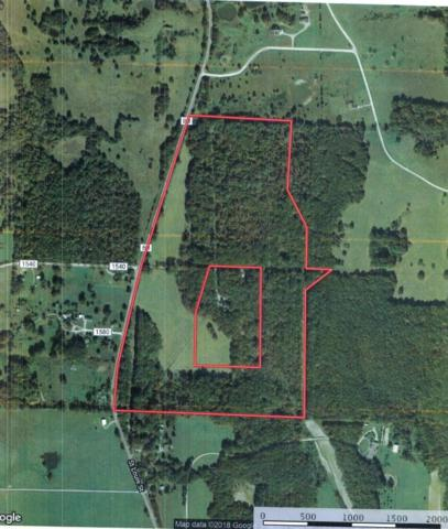 Hwy State Rte Bb Lot 3, West Plains, MO 65775 (MLS #60116831) :: Team Real Estate - Springfield