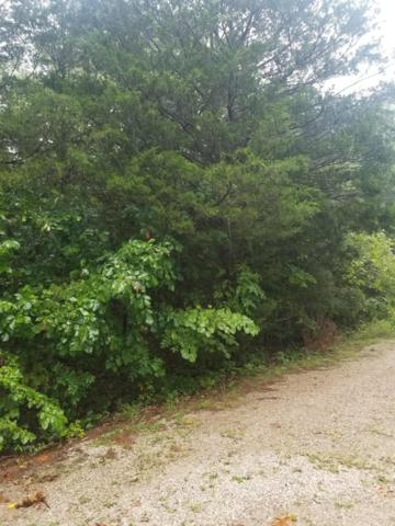 Tbd Turkey Mtn Estates, Shell Knob, MO 65747 (MLS #60117044) :: Massengale Group