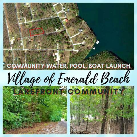 Tbd-Lots 204 & 205 Emerald Beach Estates #5, Golden, MO 65658 (MLS #60117694) :: The Real Estate Riders