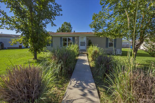 130 Paula Circle, Hollister, MO 65672 (MLS #60118506) :: Sue Carter Real Estate Group