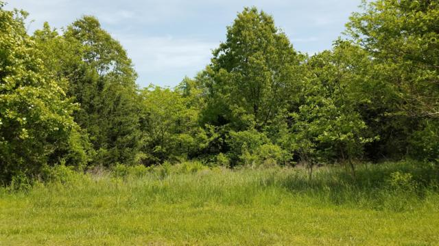 Lot 12c Kingsgate, Lampe, MO 65681 (MLS #60118548) :: The Real Estate Riders