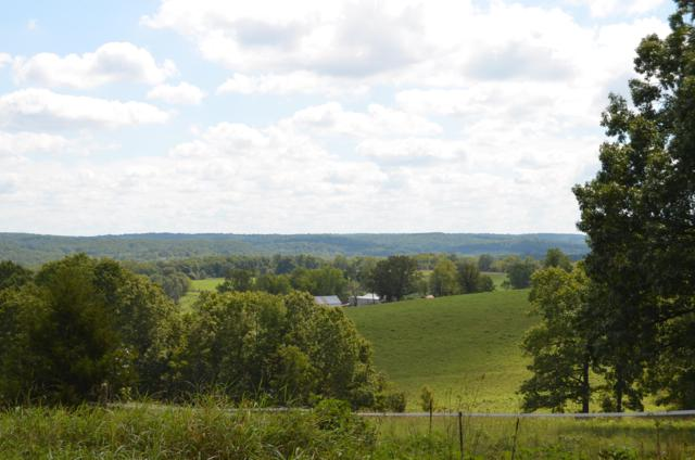 6530 Turkey Trail Drive, Hartville, MO 65667 (MLS #60118773) :: Sue Carter Real Estate Group