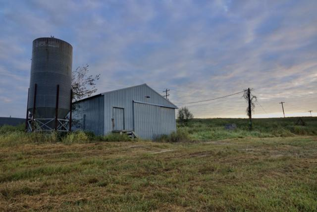 1436 County Road 137, Wasola, MO 65773 (MLS #60119438) :: Greater Springfield, REALTORS