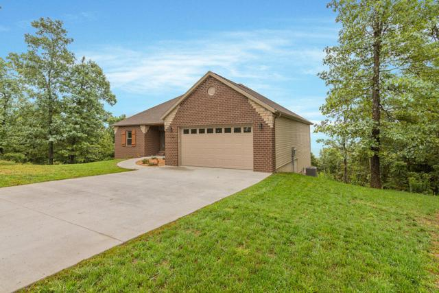 1290 Emory Creek Boulevard, Branson, MO 65616 (MLS #60119584) :: Sue Carter Real Estate Group