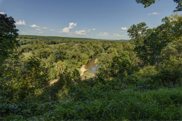 7251 E State Highway D, Rogersville, MO 65742 (MLS #60119618) :: Team Real Estate - Springfield