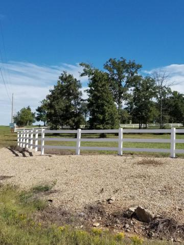 2025 Lake Ranch Road, Kissee Mills, MO 65680 (MLS #60119822) :: Weichert, REALTORS - Good Life