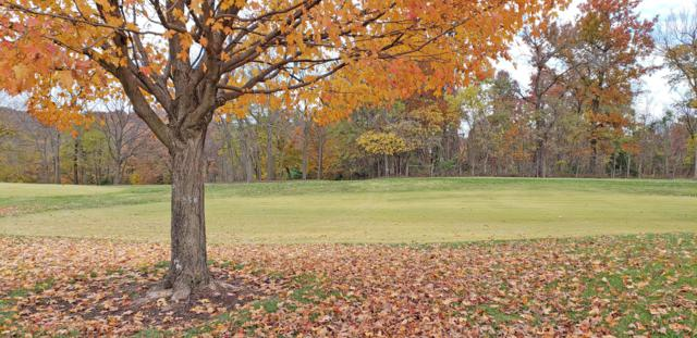 3771 E Knollwood Drive, Ozark, MO 65721 (MLS #60122943) :: Sue Carter Real Estate Group