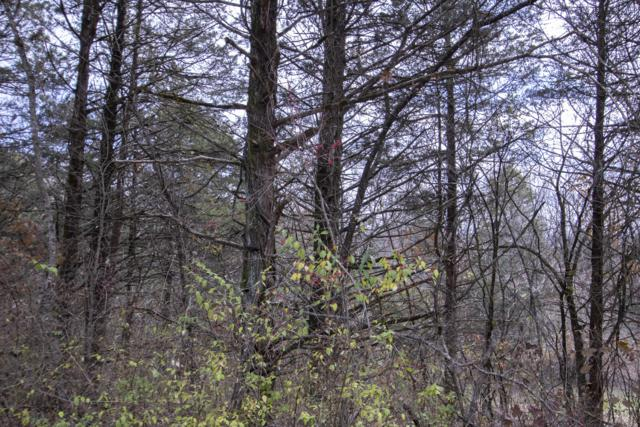 Tbd Steamboat Springs Street, Galena, MO 65656 (MLS #60124348) :: The Real Estate Riders