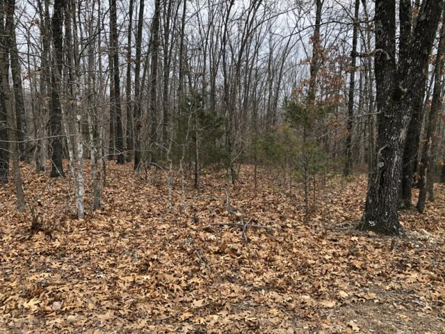 Lot 83/84 Forest View Court, Cape Fair, MO 65624 (MLS #60125123) :: Team Real Estate - Springfield