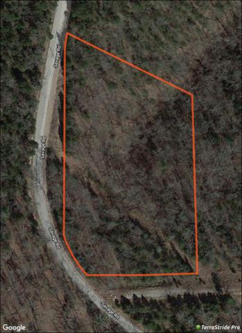 Lot 11 Savage Rd, Kirbyville, MO 65679 (MLS #60126743) :: Team Real Estate - Springfield
