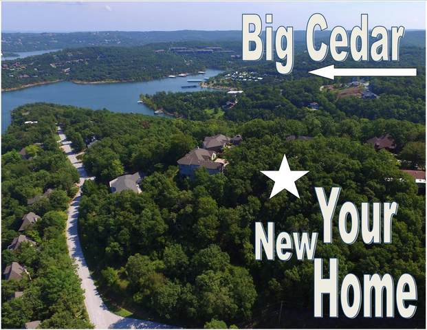000 Paradise Heights Drive, Ridgedale, MO 65739 (MLS #60126833) :: Weichert, REALTORS - Good Life