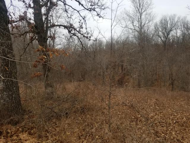 Lot 1 Eagle Acres, Goodman, MO 64843 (MLS #60127041) :: Team Real Estate - Springfield