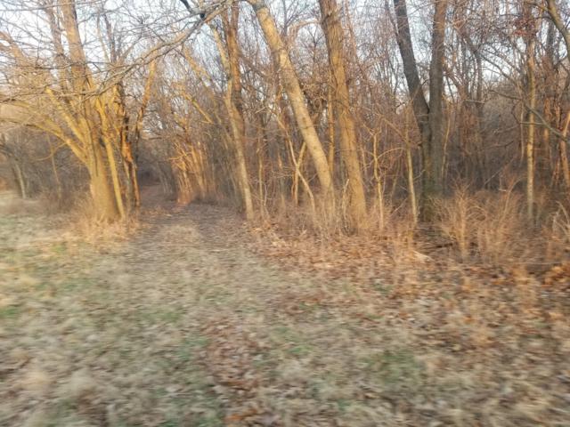 Lots 5 & 6 Eagle Acres, Goodman, MO 64843 (MLS #60127044) :: Team Real Estate - Springfield