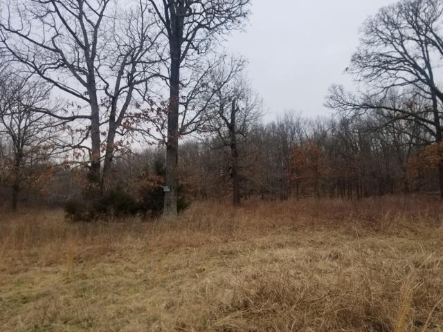 Lot 8 Eagle Acres, Goodman, MO 64843 (MLS #60127045) :: Team Real Estate - Springfield