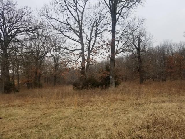 Lot 4 Eagle Acres, Goodman, MO 64843 (MLS #60127046) :: Team Real Estate - Springfield