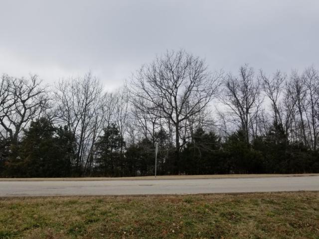 Ph9-Lt276 Skylee Drive, Hollister, MO 65672 (MLS #60127320) :: Weichert, REALTORS - Good Life